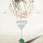 "Expo "" wooderie "" par Amose & Eroné"